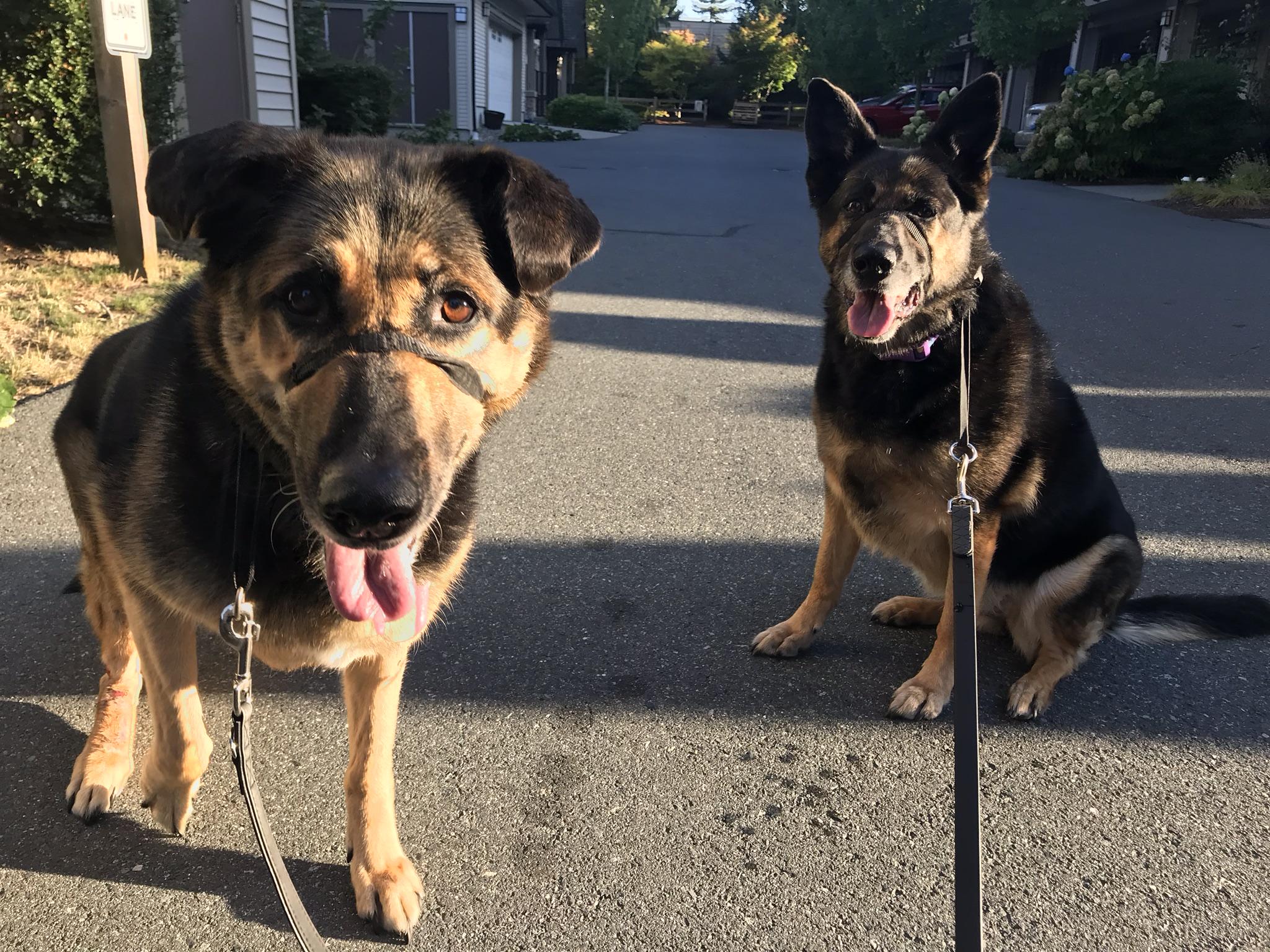 Belle & Skye