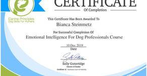 Emotional Intelligence for Dog Professionals