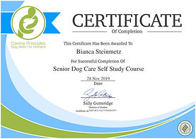 certificate-senior-dog-care-self-study-c
