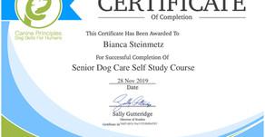 Senior Dog Care Certification