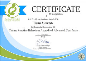 Canine Reactive Behaviour - Accredited A