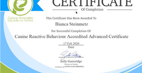 Canine Reactive Behaviour - Advanced Accredited Certificate