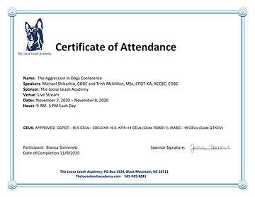 Bianca S NOV Certificate_AID 2020.jpg