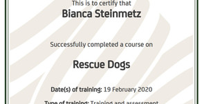 Rescue Dogs - Certified
