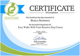 certificate-easy-walks-with-your-reactiv