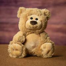 caidens hope teddy bear