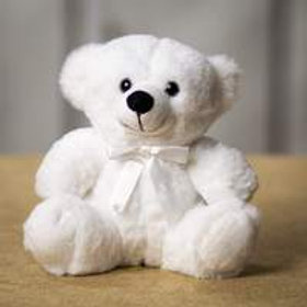 6 inch Teddy Bear in White