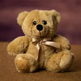 6 inch Teddy Bear in Beige