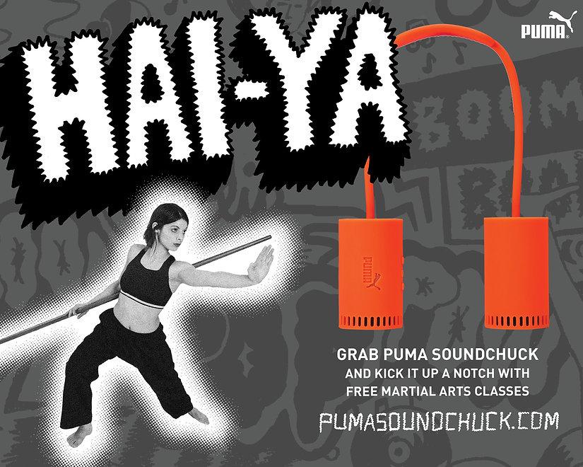 PUMA_SOUNDCHUCK8.jpg
