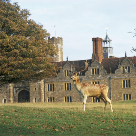 Top Places To Visit In Kent