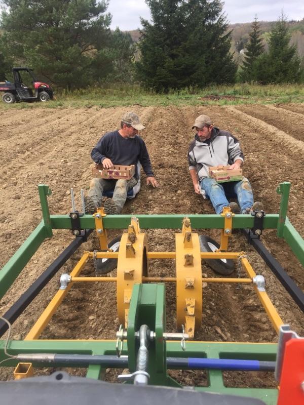 boys planting
