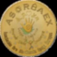 Logo4 ABSOBAEX en PNG.png
