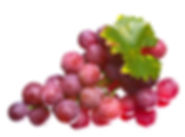 Product-large_red-grapes3_Small.jpg