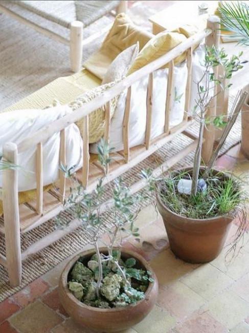 canapé et plantes