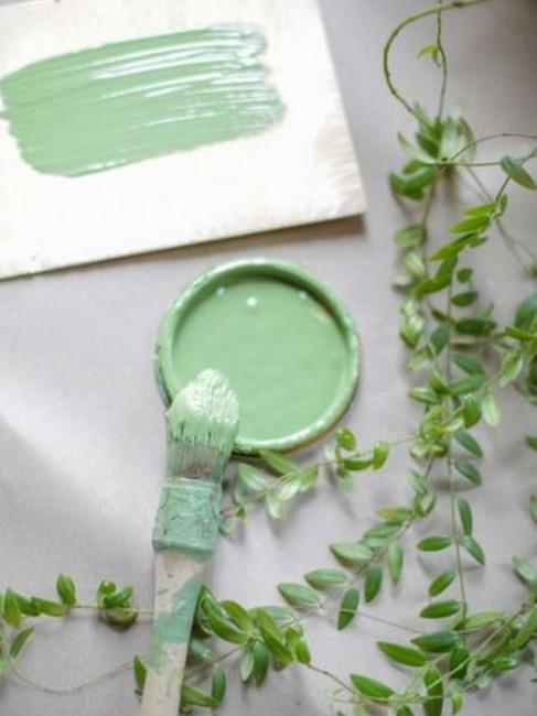 échantillon de peinture verte