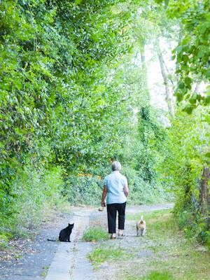 dame promenant son chien et son chat