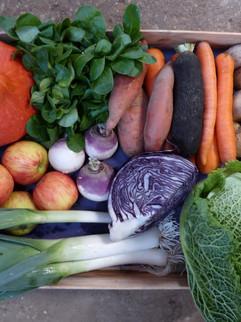 panier légumes N2 (Copier).JPG