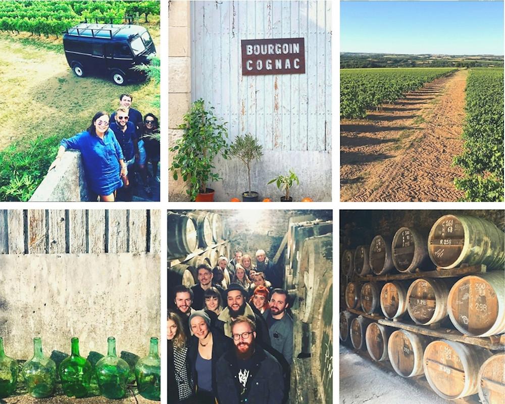 visite des vignobles des Cognac Bourgoin groupes vignes, chais, barriques, dame Jeanne