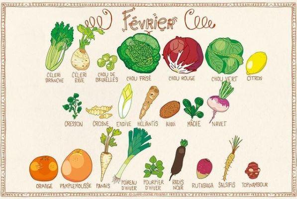 Février, fruits et légumes de saison, illustrations de Claire Sophie Pissenlit