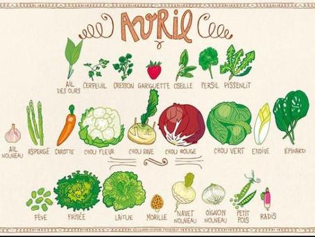 Avril, fruits et légumes de saison, illustrations de Claire Sophie Pissenlit