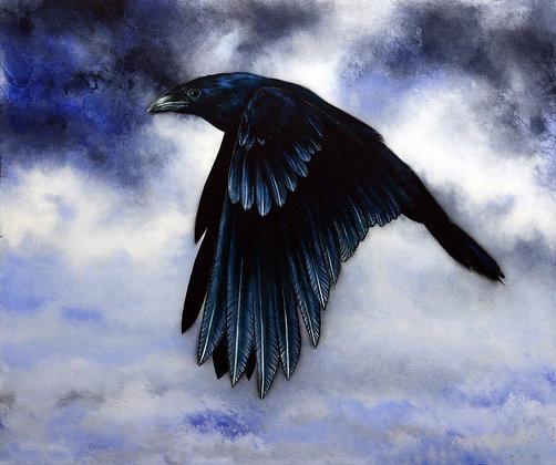 'in flight' i A4 canvas paper print