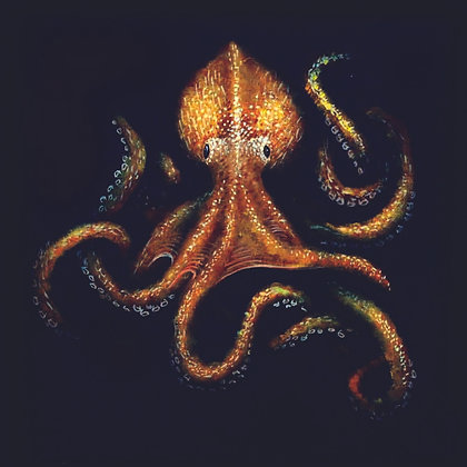 signed octopus print 210mmx210mm