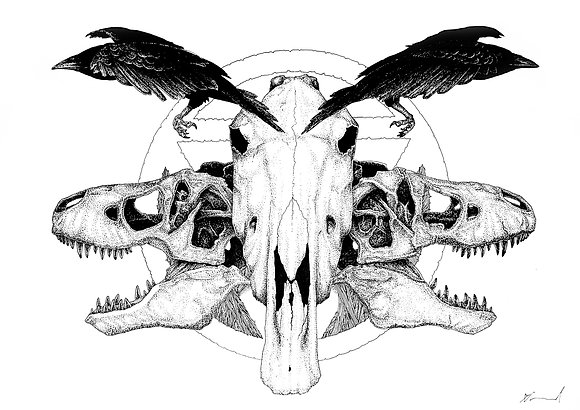 Equine Rex A4 print