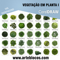 Vegetação em planta I