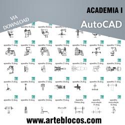 Academia I
