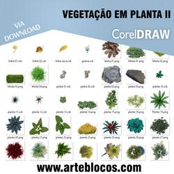 Vegetação em planta II