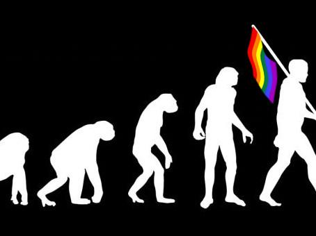 2 ou 3 apontamentos evolutivos sobre a homossexualidade
