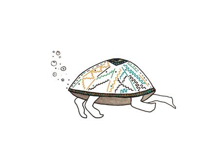 As Tartarugas preferem não usar máscaras