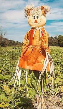 Scarecrow Pop Up.png