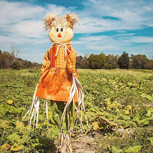 Scarecrow Pop Up