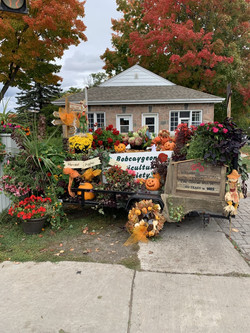 Bobcaygeon Horticultural Society
