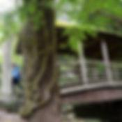 御幸の橋.JPG
