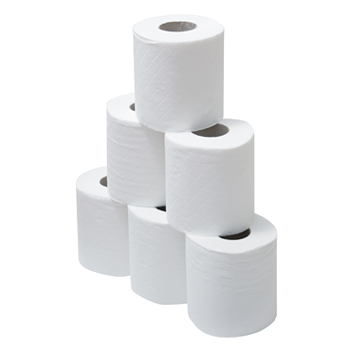 2 PLY TOILET PAPER 420 SHEETS