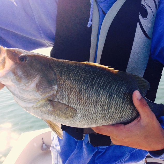 Cutler's Catch Guide Service | Glen Lake Michigan | Smallmouth Bass Fishing