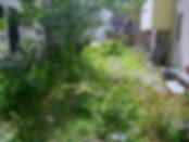 takumi_reform_02_edited_edited.jpg