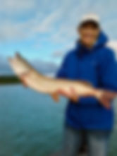 Glen Lake Guided Fishing: Northern Pike