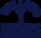 cropped-Willies-Remedy-Logo-TM-CYBD-1.pn