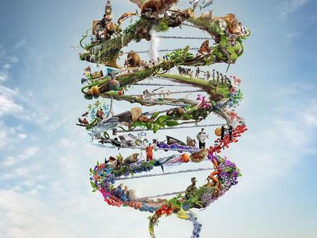 De onde vem a Bioética e qual sua importância na prática?