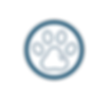 WebsiteIcons-03.png