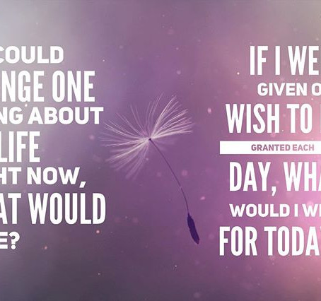 If I Had One Wish Today, What Would It Be?