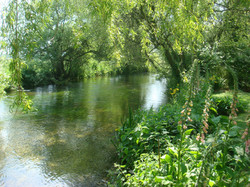 The River Allen