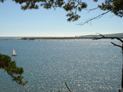 Studland from Brownsea Island