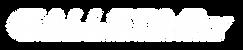 GallStar TV Logo PNG.png