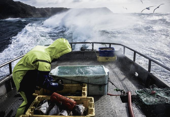 Chatham Islands Fishing.jpg