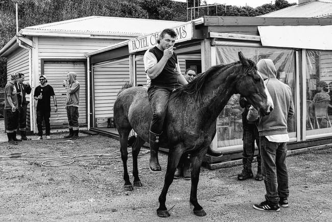 Chatham Islands Horse.jpg