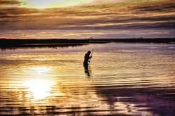 Chatham Islands Lagoon